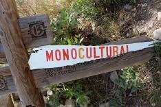 monoculture2
