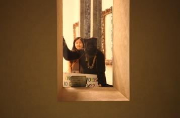 Tate.bear.window2.cf